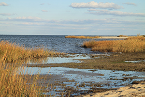$9.2 million granted for projects throughout the Chesapeake Bay Watershed