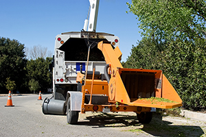 OSHA Releases Tree Care Worker Safety Resource