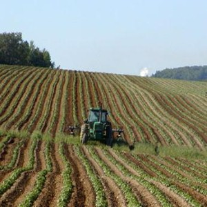 ASSE urges agricultural safety
