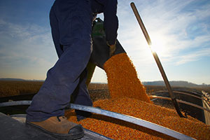 Protect workers from grain bin suffocation